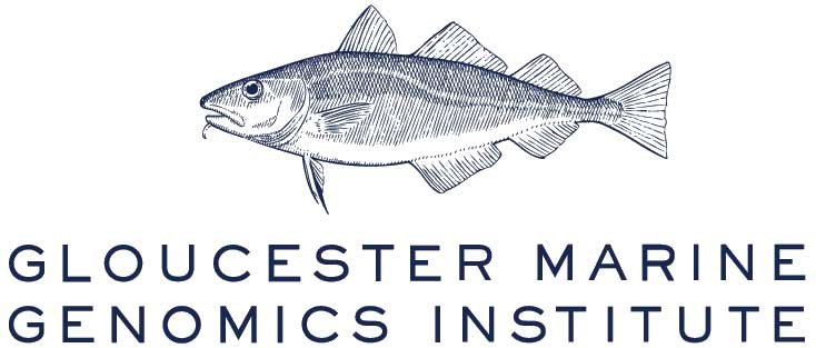 GMGI – Gloucester Marine Genomics Institute
